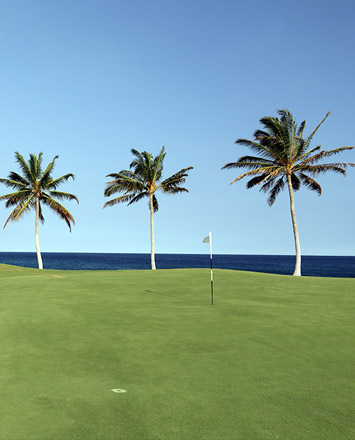 golf-island-images-hawaii-island-355x440.jpg