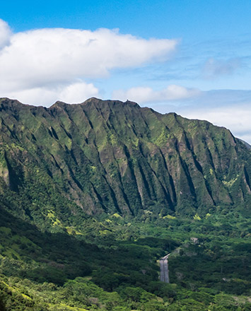 history-island-images-oahu-pali-lookout-355x440.jpg