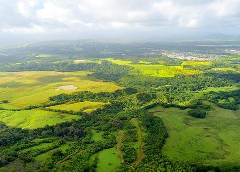 Kauai Garden Green Aerial
