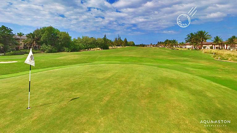 Golf course Hawaii Island Zoom background
