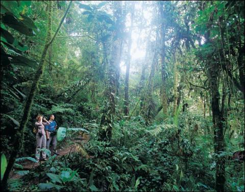 ecotourism-480x378.jpg