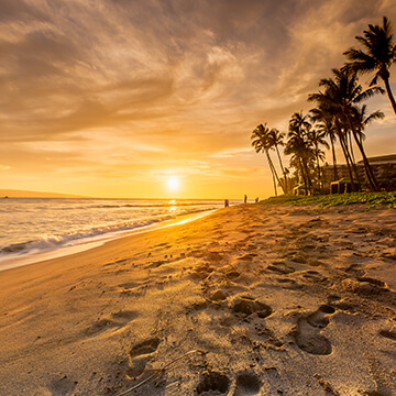 Sourcekaanapali-beach-getting-to-360X360.jpg