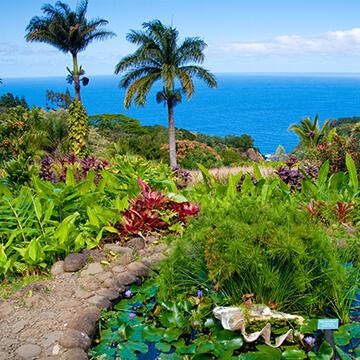 garden-of-eden-arboretum-360X360.jpg